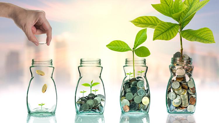 Dicas de investimentos para iniciantes